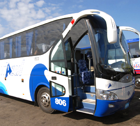 Cayo Sabinal by Viazul Bus Service | Prices, Offices, Phones, Timetables